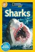 Libro in inglese Sharks! Anne Schreiber
