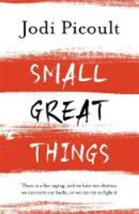 Small Great Things: The bestselling novel you won't want to miss - Jodi Picoult - cover