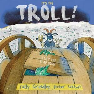 It's the Troll: Lift-the-Flap Book - Sally Grindley - cover