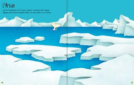 Foto Cover di La natura. Con adesivi, Libro di Felicity Brooks,Federica Iossa, edito da Usborne Publishing 2