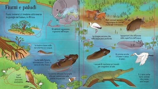 La giungla. Libri animati - Minna Lacey,Brendan Lacey - 3