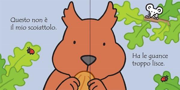 Libro Dove'è il mio scoiattolo? Fiona Watt , Rachel Wells 1