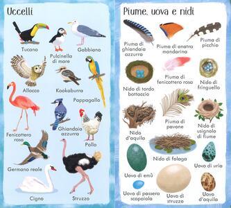 199 meraviglie della natura. Ediz. a colori - Hannah Watson - 2
