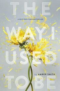 Libro in inglese The Way I Used to Be  - Amber Smith