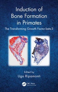 Induction of Bone Formation in Primates: The Transforming Growth Factor-beta 3 - cover
