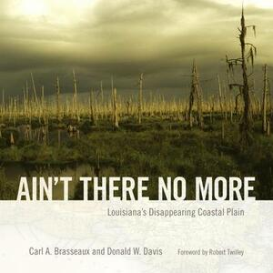 Ain't There No More: Louisiana's Disappearing Coastal Plain - Carl A. Brasseaux,Donald W. Davis - cover
