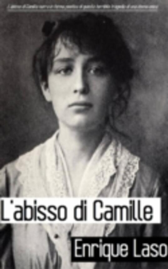 L'abisso Di Camille - Enrique Laso - ebook