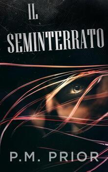 Il seminterrato - P.M. Prior - ebook