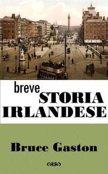 Breve Storia Irlandese - Bruce Gaston - ebook