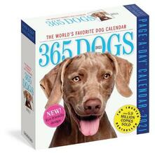 2021 365 Dogs Colour Page-A-Day Calendar - Workman Calendars - cover