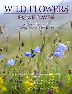 Sarah Raven's Wild Flowers - Sarah Raven - cover