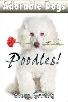 Adorable Dogs: Poodles