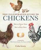 Libro in inglese The Illustrated Guide to Chickens: How to Choose Them, How to Keep Them Celia Lewis