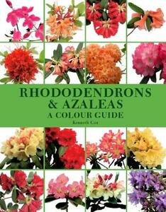 Rhododendrons and Azaleas: A Colour Guide - Kenneth Cox - cover