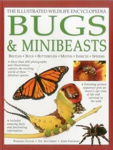Illustrated Wildlife Encyclopedia: Bugs & Minibeasts - Barbara Taylor,Jen Green,John Farndon - cover