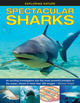 Spectacular Sharks: An Exciting...