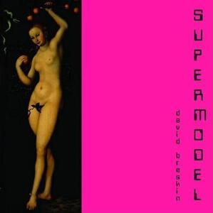 Supermodel - David Breskin - cover