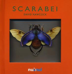 Scarabei. Libro pop-up. Ediz. illustrata - David Hawcock - copertina