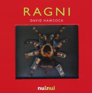 Ragni. Libro pop-up. Ediz. a colori - David Hawcock - copertina