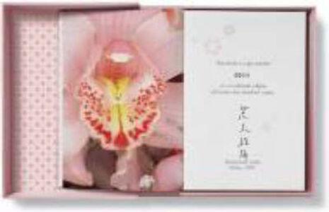 Foto Cover di Araki. Ediz. inglese, francese e tedesca, Libro di  edito da Taschen