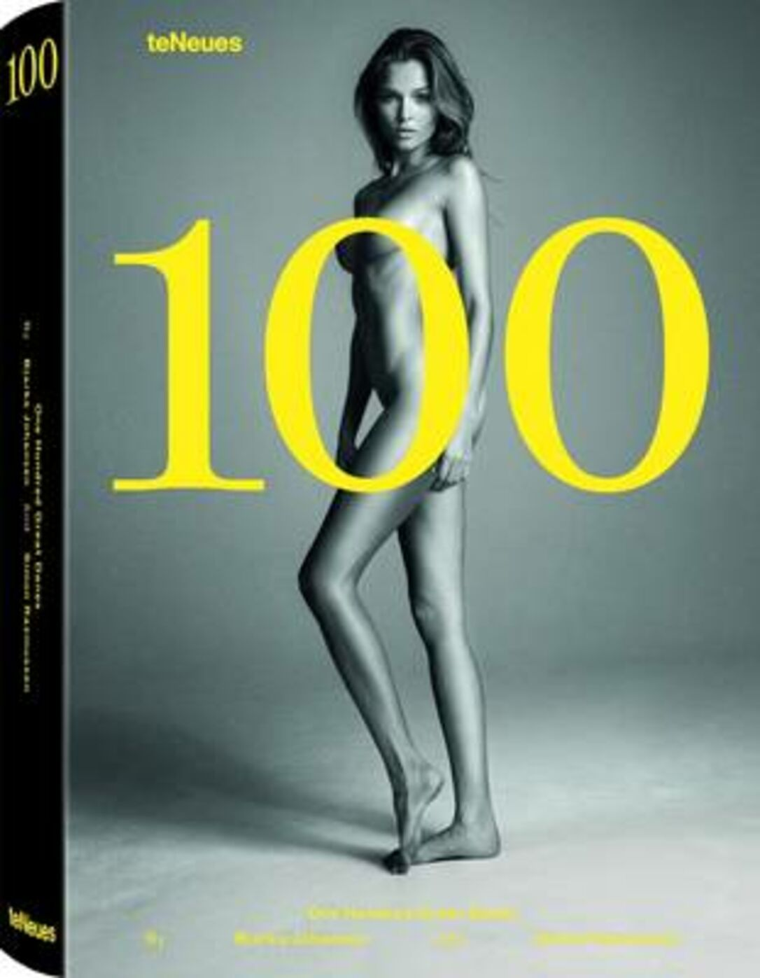 100. One hundred great danes