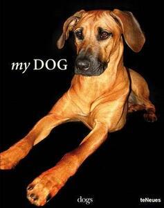 My dog - copertina