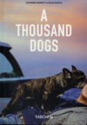 Thousand Dogs (A)