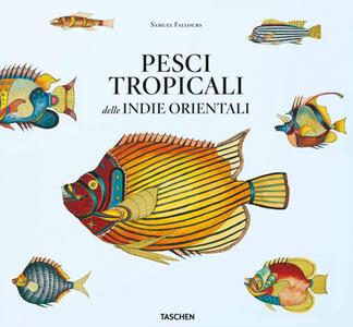 Pesci tropicali delle Indie orientali. Ediz. italiana, spagnola e portoghese - Theodore W. Pietsch - copertina