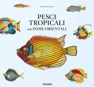 Libro Pesci tropicali delle Indie orientali. Ediz. italiana, spagnola e portoghese Theodore W. Pietsch
