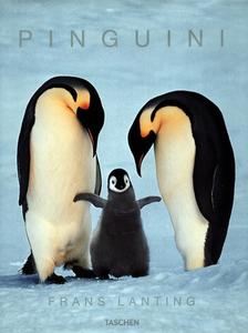 Libro I pinguini. Ediz. illustrata