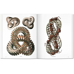 Libro M. C. Escher. Stampe e disegni  3