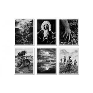 Genesis. Postcard set. Ediz. illustrata - Sebastião Salgado - 2