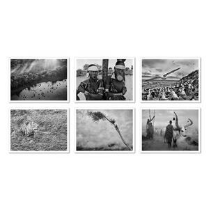 Genesis. Postcard set. Ediz. illustrata - Sebastião Salgado - 4