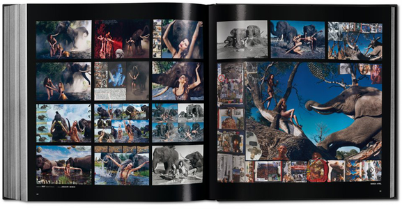 Libro Pirelli. The calendar. 50 years and more. Ediz. italiana, inglese, francese, tedesca e spagnola Philippe Daverio 4