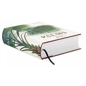 Libro C. F. P. von Martius. The book of palms. Ediz. italiana, spagnola e portoghese H. Walter Lack 1