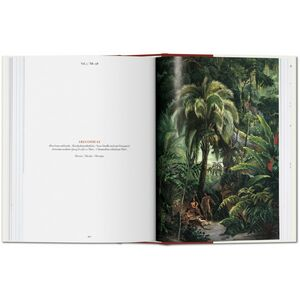 Libro C. F. P. von Martius. The book of palms. Ediz. italiana, spagnola e portoghese H. Walter Lack 3