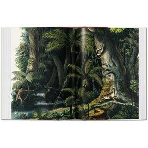 Libro C. F. P. von Martius. The book of palms. Ediz. italiana, spagnola e portoghese H. Walter Lack 4