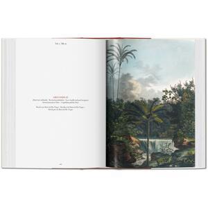 C. F. P. von Martius. The book of palms. Ediz. italiana, spagnola e portoghese - H. Walter Lack - 6
