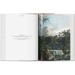 Libro C. F. P. von Martius. The book of palms. Ediz. italiana, spagnola e portoghese H. Walter Lack 5