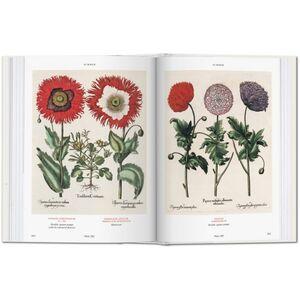 Libro Basilius Besler's florilegium. The book of plants Klaus W. Littger , Werner Dressendörfer 2