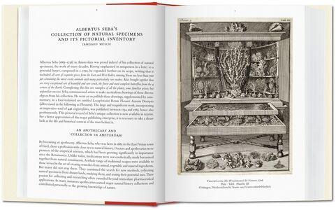 Libro Albertus Seba. Cabinet of natural curiosities. Ediz. italiana, spagnola e portoghese Irmgard Musch , Jes Rust , Rainer Willmann 1