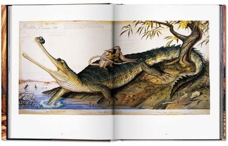 Foto Cover di Walton Ford. Pancha Tantra. Ediz. inglese, francese e tedesca, Libro di Bill Buford, edito da Taschen 2