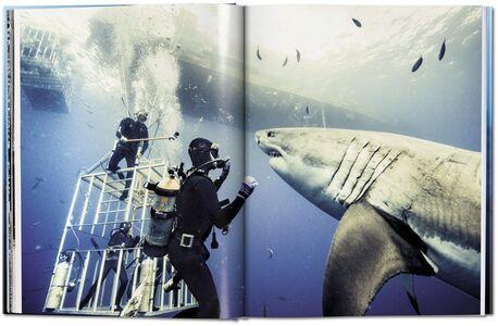 Foto Cover di Michael Muller. Sharks. Ediz. inglese, Libro di AA.VV edito da Taschen 1