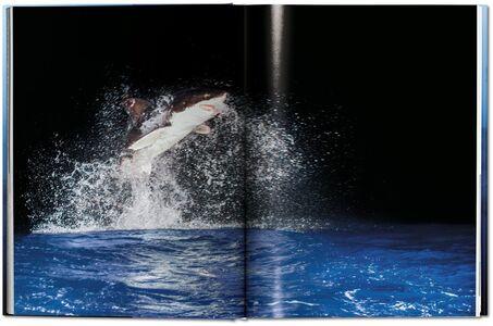 Foto Cover di Michael Muller. Sharks. Ediz. inglese, Libro di AA.VV edito da Taschen 7