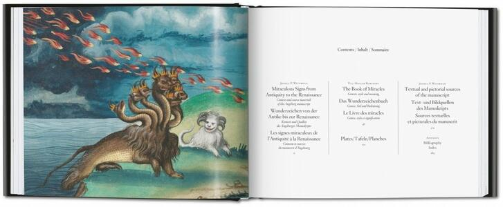 The book of miracles. Ediz. italiana e spagnola - Till-Holger Borchert,Joshua P. Waterman - 2