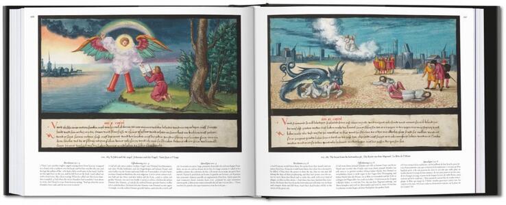 The book of miracles. Ediz. italiana e spagnola - Till-Holger Borchert,Joshua P. Waterman - 3