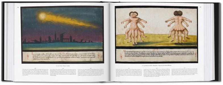 The book of miracles. Ediz. italiana e spagnola - Till-Holger Borchert,Joshua P. Waterman - 7