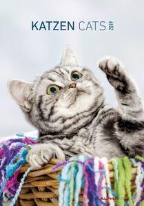 Calendario 2019 Alpha Edition 23,7 x 34 cm. Gatti. Cats