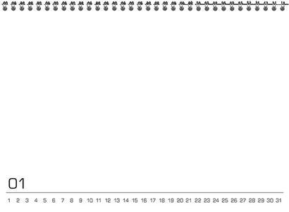 Calendario perpetuo Do It Yourself 21 x 15 cm - 7