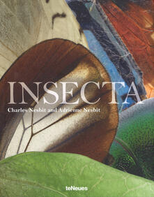 Insecta - cover